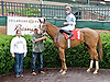Appealing Stella winning at Delaware Park on 6/4/12