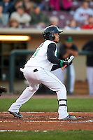 Dayton Dragons second baseman Ronald Bueno (4) squares to bunt during a game against the Great Lakes Loons on May 21, 2015 at Fifth Third Field in Dayton, Ohio.  Great Lakes defeated Dayton 4-3.  (Mike Janes/Four Seam Images)