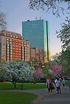 Spring, late afternoon, in the Boston Public Garden.The Hancock Building.