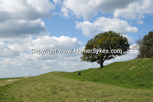 Prehistoric earth works. Highdown Hill Near Worthing East Sussex UK. South Downs