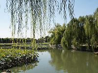 im BeiHai Park, Peking, China, Asien<br /> in Beihai Park , Beijing, China, Asia