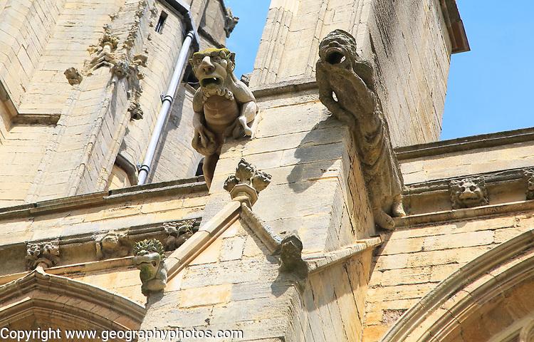 Gargoyles on Ely cathedral church, Ely, Cambridgeshire, England, UK