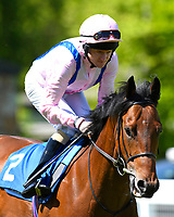 Glorious Charmer ridden by Liam Keniry goes down to the start of  The Penang Turf Club Malaysia Novice Stakes (Plus 10 Race) (Class 4) during Afternoon Racing at Salisbury Racecourse on 17th May 2018