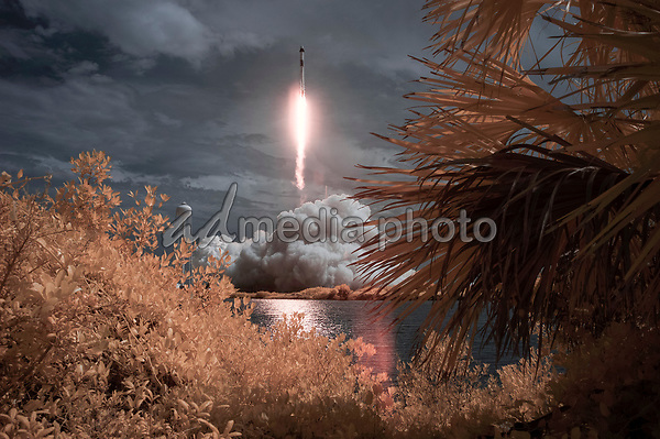 In this photo released by the National Aeronautics and Space Administration (NASA), A SpaceX Falcon 9 rocket carrying the company's Crew Dragon spacecraft is seen in this false color infrared exposure as it is launched on NASA's SpaceX Demo-2 mission to the International Space Station with NASA astronauts Robert Behnken and Douglas Hurley onboard, Saturday, May 30, 2020, at NASA's Kennedy Space Center in Florida. The Demo-2 mission is the first launch with astronauts of the SpaceX Crew Dragon spacecraft and Falcon 9 rocket to the International Space Station as part of the agency's Commercial Crew Program. The test flight serves as an end-to-end demonstration of SpaceX's crew transportation system. Behnken and Hurley launched at 3:22 p.m. EDT on Saturday, May 30, from Launch Complex 39A at the Kennedy Space Center. A new era of human spaceflight is set to begin as American astronauts once again launch on an American rocket from American soil to low-Earth orbit for the first time since the conclusion of the Space Shuttle Program in 2011. <br /> Mandatory Credit: Bill Ingalls / NASA via CNP/AdMedia