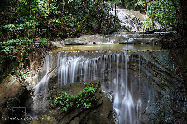 Limestone falls in the rain forest