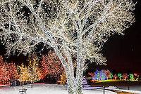 USA-Colorado-Littleton-Hudson Gardens-Christmas
