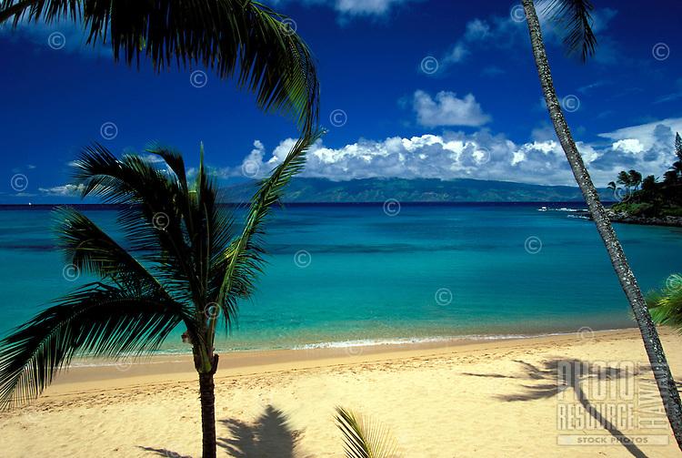Napili Bay, Maui with palm shadows.