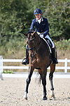 Stapleford Abbotts. United Kingdom. 08 September 2019. Class 9. British dressage. Brook Farm training centre. Essex. UK.~ 08/09/2019.  MANDATORY Credit Garry Bowden/Sport in Pictures - NO UNAUTHORISED USE - 07837 394578