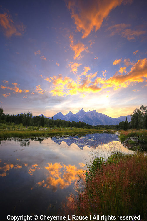 Teton Summer Sunset  - Wyoming (vertical) Pond reflection