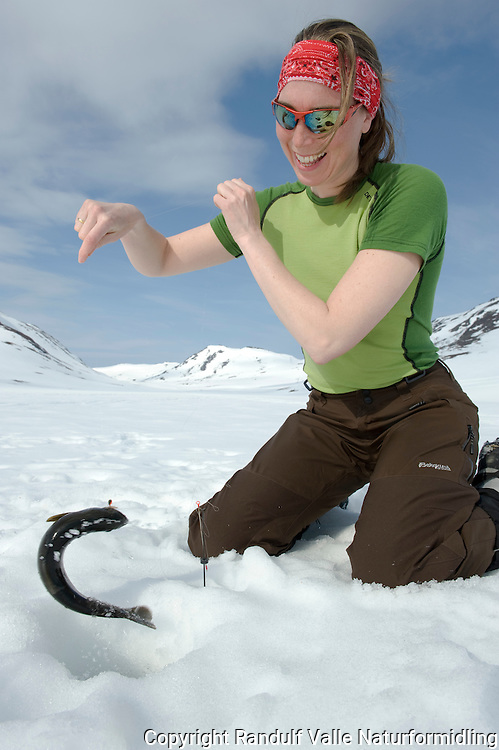 Jente får ørret på isfiske ---- Girl catching trout
