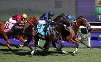 11-04-17 Qatar Juvenile Turf Spring Stakes