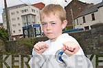 FISTS OF FIRE: Dara O'Sullivan from Tralee who  won a series of Tae-Kwon-Do championships over the past few weeks including Munster, Cork and Irish Titles.   Copyright Kerry's Eye 2008