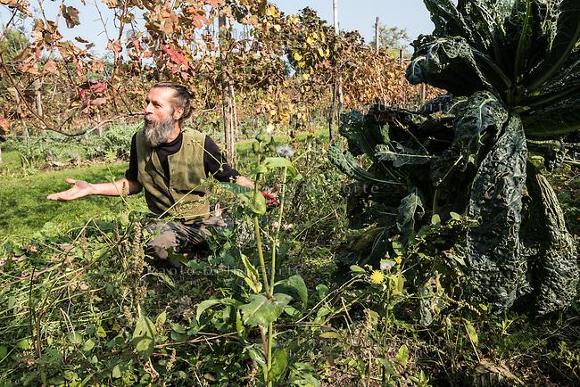 Venezia L'orto sinergico coltivato da Michele Savorgnano. Sono 300 le piante i fiori coltivati in questo spazio. Michele Savorgnano si prepara per seminare.