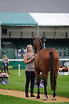 Sarah Stretton during the First Vets Inspection at the 2014 Land Rover Burghley Horse Trials held at Burghley House, Stamford, Lincolnshire