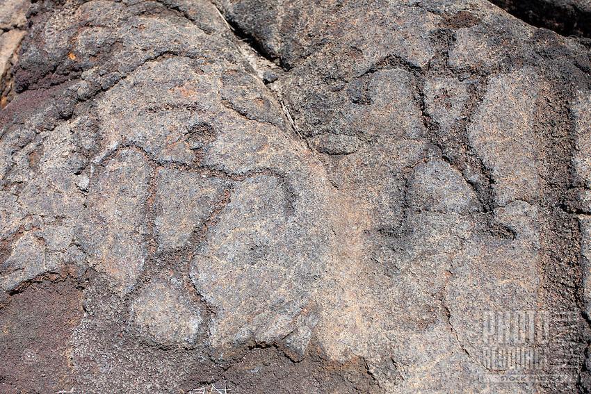 Petroglyphs at the Pu'u Loa Petroglyph Field in Hawai'i Volcanoes National Park, Big Island.