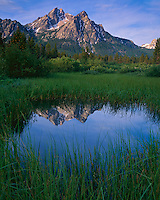 Sawtooth NRA, ID: Morning sun on Mount McGown with reflections on a grassy wetland pond