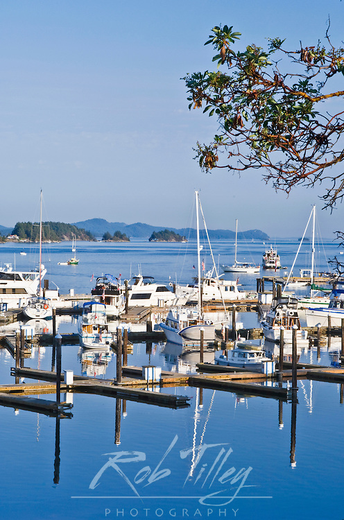Canada, BC, Gulf Islands, Salt Sporing Island, Ganges Harbor