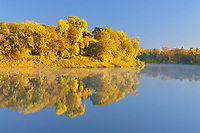 Forest in autumn colors reflected in the Red River at sunrise. St. Vital Park<br />Winnipeg<br />Manitoba<br />Canada