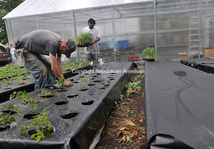 WATERBURY, CT-14 JULY 2010-071410IP08- Gordon Rhynhart (left) and Eric LaFfitte (cq) work on the Crownbrook Greenhouse and Community Garden in Waterbury on Wednesday. Food grown in the greenhouse and garden will be delivered to the soup kitchen at St. Vincent de Paul and to the food pantry at Waterbury Baptist Ministries.                                                                                                                                                                                                                                                                                                                                                                                                                                                                                                                                                                                                                                                                                                                                                                                            <br /> Irena Pastorello Republican-American