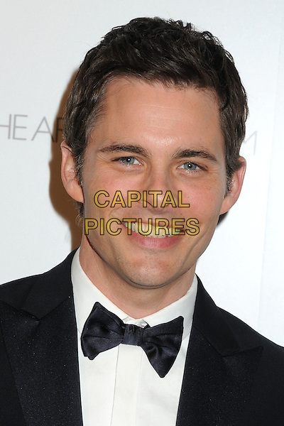 11 January 2014 - Los Angeles, California - James Marsden. 7th Annual Art of Elysium Heaven Gala held at the Skirball Cultural Center.  <br /> CAP/ADM/BP<br /> &copy;Byron Purvis/AdMedia/Capital Pictures