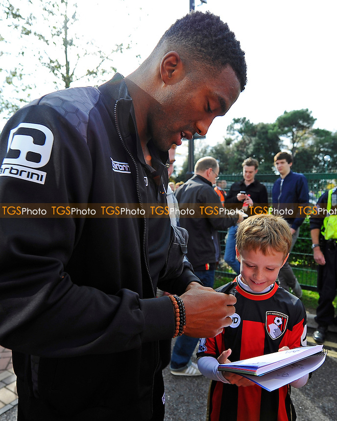 Sylvain Distin of AFC Bournemouth during AFC Bournemouth vs Tottenham Hotspur at the Vitality Stadium