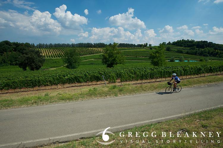 A cyclist on the Sangiovese di Romagna Wine Trail near Faenza, Italy