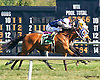 Prince Vincenzo winning at Delaware Park on 9/23/15