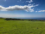 Kohala Mountain Rd View