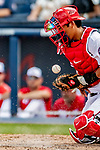26 February 2019: Washington Nationals catcher Kurt Suzuki blocks a pitch with his chest protector during a Spring Training game against the St. Louis Cardinals at the Ballpark of the Palm Beaches in West Palm Beach, Florida. The Nationals fell to the visiting Cardinals 6-1 in Grapefruit League play. Mandatory Credit: Ed Wolfstein Photo *** RAW (NEF) Image File Available ***