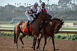 DEL MAR, CA  AUGUST 4: #7 Madame Stripes, ridden by Geovanni Franco, in the post parade before the Yellow Ribbon Handicap (Grade ll) on August 4, 2018 at Del Mar Thoroughbred Club in Del Mar, CA.(Photo by Casey Phillips/Eclipse Sportswire/ Getty Images)