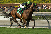ARCADIA, CA  DECEMBER 26:  #5 Bowies Hero, ridden by Kent Desormeaux,) edges out #1 Kroy, ridden by Javier Castellano, in the Mathis Brothers Mile (Grade ll) on December 26, 2017 at Santa Anita Park in Arcadia, CA. (Photo by Casey Phillips/ Eclipse Sportswire/ Getty Images)