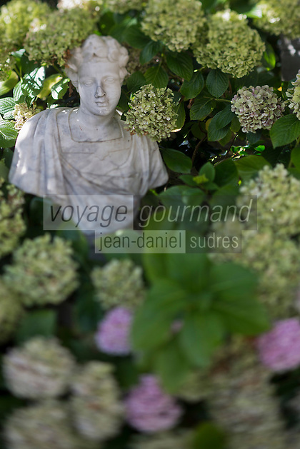 France, Ille et Vilaine (35), C&ocirc;te d'Emeraude, vall&eacute;e de la Rance,  Pleurtuit: Domaine de Montmarin et Ch&acirc;teau de Montmarin , le jardin:  Jardin du Domaine de Montmarin<br /> Hydrang&eacute;a Macrophylla: Madame Emile  Mouilli&egrave;re //  France, Ille et Vilaine, Cote d'Emeraude (Emerald Coast), Rance Valley, Pleurtuit / Montmarin Castle, the garden