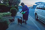 Ray and Phyllis Zeeb, of Antioch, California spend several evenings a week driving around town feeding cats. The Zeeb's are H.A.R.P. (Homeless Animal Response Program) volunteers and have been trapping, spaying/neutering, vaccinating, returning and adopting cats for over a decade.  Their feeding rounds take several hours and many of the cats have names, the Zeebs know each of the cats and their histories, and they work tirelessly to provide food, water and medical attention when needed for these cats.  Here Phylis Zeeb provides food and water to a group of cats on Monday, March 24th, 2014 in Antioch, California.  Photo/Victoria Sheridan