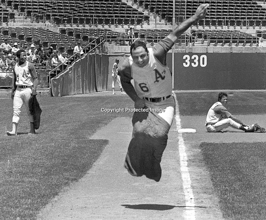 Oakland A's Sal Bando in the sack race during Farmers Day at the Oakland Coliseum..(1970 photo)