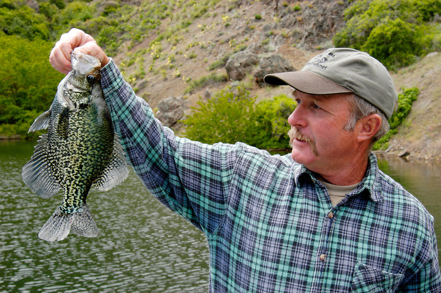 Guide Gary Gorbet with a large Crappie Brownlee Reservoir on the Snake River above Hell's Canyon is considred Idaho's best fishing impoundment.  Crappie, bass, catfish, and trout are available in this popular impoundment bordered by Oregon and Idaho.