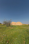 Israel, the northern Negev. Besor route scenic road