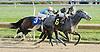 Weggie winning at Delaware Park on 11/1/11