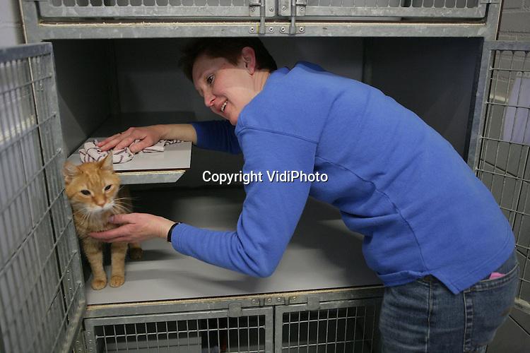 Foto: VidiPhoto..WAGENINGEN - Een dierenverzorger van dierenasiel De WagenRenk in Wageningen maakt een kattenverblijf schoon.