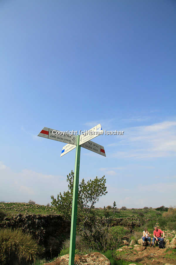 Golan Heights, Zavitan trail at Yehudiya Forest Nature Reserve