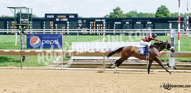 Clowns to the Left winning thru at Delaware Park on 7/30/14