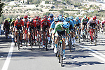Dario Cataldo (ITA) Astana Pro Team wearing the Green Jersey at the front of the peloton during Stage 2 of La Vuelta 2019 running 199.6km from Benidorm to Calpe, Spain. 25th August 2019.<br /> Picture: Luis Angel Gomez/Photogomezsport | Cyclefile<br /> <br /> All photos usage must carry mandatory copyright credit (© Cyclefile | Luis Angel Gomez/Photogomezsport)