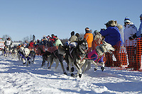 Lachlan Clark leaves the start chute in Willow, Alaska duirng the re-start of the 2011 Iditarod.