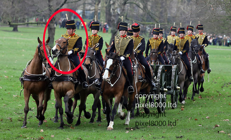 Pic shows: Hero trooper - Lance Bombardier Grace Gostelow  - who broke her neck whilst stopping a runaway horse returns to duty for the first time as the King's Troop Royal Horse Artillery <br /> <br /> <br /> 41 gun salute Green Park marked the return of  <br /> <br /> Many of KIng's Troop Horse Artillery were women this year.<br /> <br /> <br /> <br /> <br /> <br /> <br /> <br /> <br /> pic by Gavin Rodgers/Pixel8000