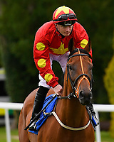 Altaira ridden by William Carson goes down to the start of the Dartmouth General Contractors Ltd Handicap (Div 1),  during Afternoon Racing at Salisbury Racecourse on 7th August 2017