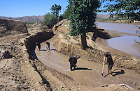 Farmer working on Irrigation canal