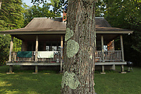 Cabin beside a lake in Western Vermont, USA, with a lichen covered maple tree in front of it. Close up of the lichen covered tree bark.