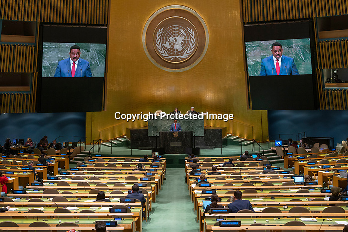 His Excellency Workineh Gebeyehu NEGEWO Minister for Foreign Affairs of Ethiopia