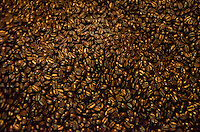 Roasted coffee beans in the process of cooling, Kaleo's Koffee, Pua'a Kea Farm, Pa'auilo, Hamakua Coast, Big Island.