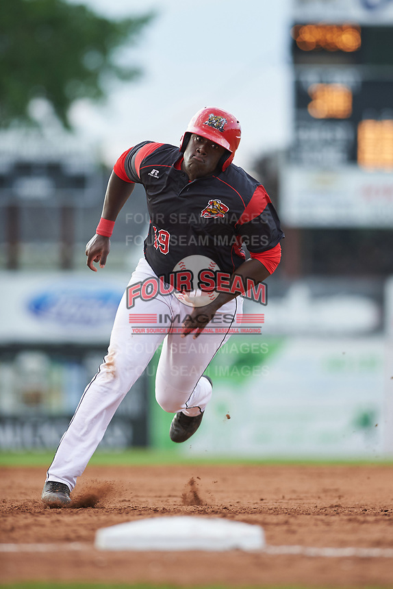 Batavia Muckdogs first baseman Lazaro Alonso (19) running the bases during a game against the Auburn Doubledays on June 19, 2017 at Dwyer Stadium in Batavia, New York.  Batavia defeated Auburn 8-2 in both teams opening game of the season.  (Mike Janes/Four Seam Images)