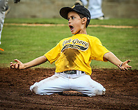 Oak Grove, MS - Cal Ripken Southwest 2014